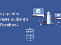 creste audienta facebook